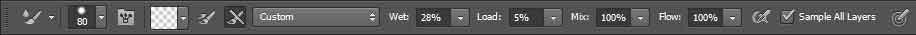 adobe photoshop mixer brush tool options bar