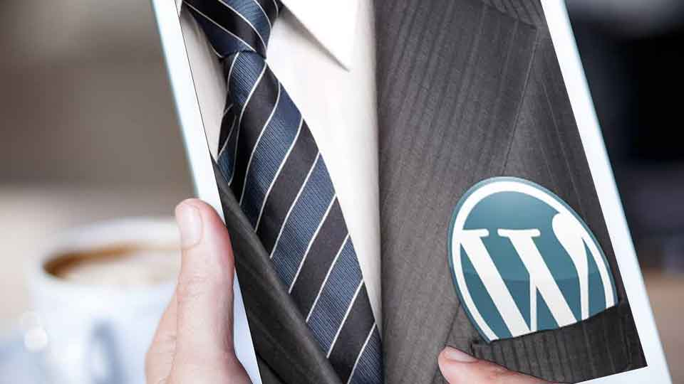 3 technical skills you must have to be a professional wordpress developer